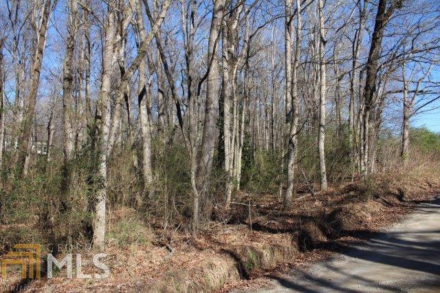 0 Glade Creek Rd - Photo 1