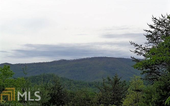 0 Crockett Mountain - Photo 1