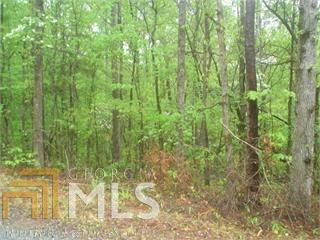 0 Pine Dr #21, Pine Mountain, GA 31822 (MLS #8216892) :: Bonds Realty Group Keller Williams Realty - Atlanta Partners