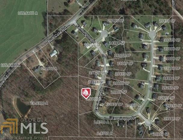 196 Farmington Dr, Temple, GA 30179 (MLS #8286399) :: Rettro Group