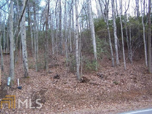 Lot#22 Bee Gum Gap, Sky Valley, GA 30537 (MLS #8291142) :: Bonds Realty Group Keller Williams Realty - Atlanta Partners