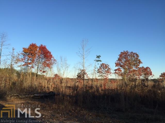 0 Highway 120, Buchanan, GA 30113 (MLS #8311418) :: Main Street Realtors