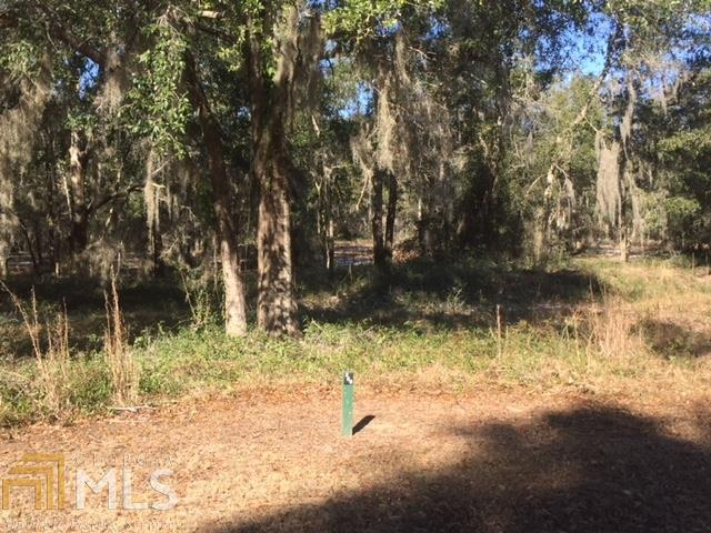 266 Coopers Pt Dr, Shellman Bluff, GA 31331 (MLS #8317874) :: Rettro Group