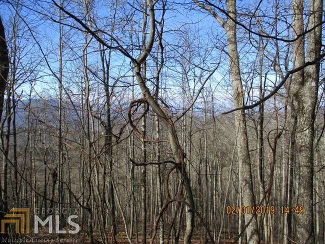 0 Forest Court  (Alex Mountain) - Photo 1