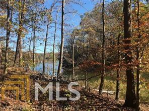 1170 Lakeshore Dr, Gainesville, GA 30501 (MLS #8333974) :: The Realty Queen Team