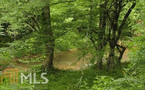 1 Settlement Rd Tr 1, Young Harris, GA 30582 (MLS #8345485) :: The Durham Team