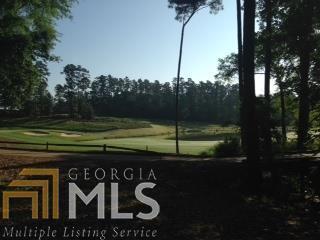 1041 Henrys Hill, Greensboro, GA 30642 (MLS #8347586) :: The Durham Team