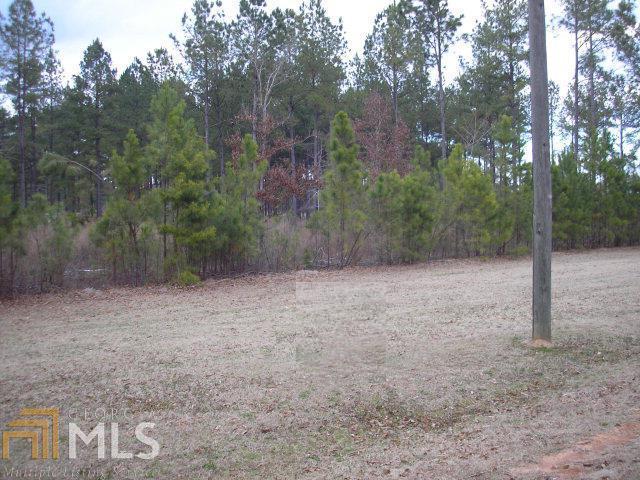 0 Bobbitt Farm Rd Tr C-2, Dudley, GA 31022 (MLS #8352445) :: Anderson & Associates
