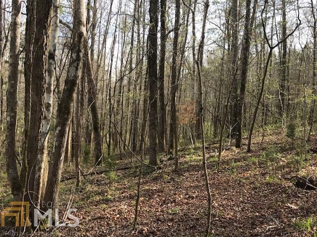 0 Deer Pointe Rd, Lagrange, GA 30240 (MLS #8354874) :: Anderson & Associates