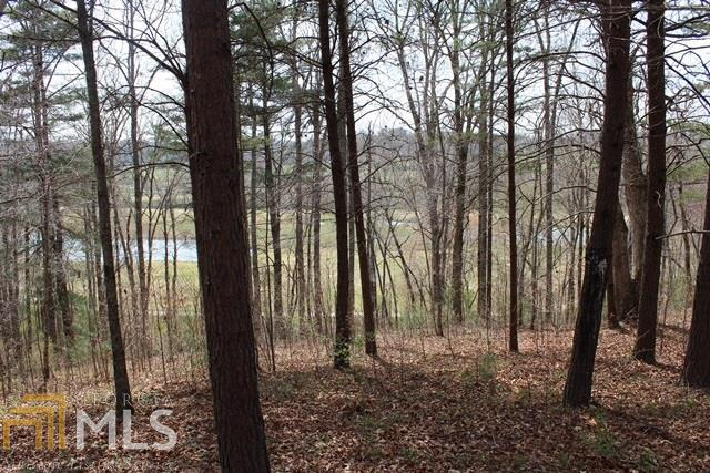 0 Yonah Way #59, Blairsville, GA 30512 (MLS #8361762) :: Anderson & Associates