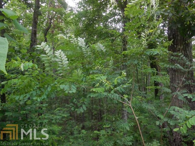 0 Forest Glen Ct Lot 86, Clayton, GA 30525 (MLS #8366423) :: Bonds Realty Group Keller Williams Realty - Atlanta Partners