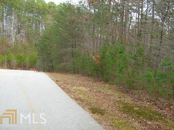 1316 Red June Ln, Clarkesville, GA 30523 (MLS #8412678) :: The Durham Team