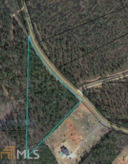 0 Hogan Coweta Rd, Hogansville, GA 30230 (MLS #8426518) :: Ashton Taylor Realty
