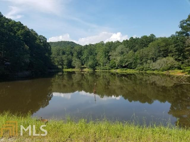 0 Waters Edge Dr #21, Clarkesville, GA 30523 (MLS #8432392) :: The Durham Team