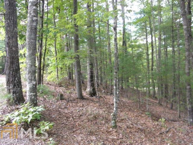 lot 9 Villa Weg #9, Helen, GA 30545 (MLS #8457086) :: Anderson & Associates