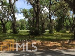 316 Coopers Pt Dr Lot 316, Shellman Bluff, GA 31331 (MLS #8463462) :: Rettro Group