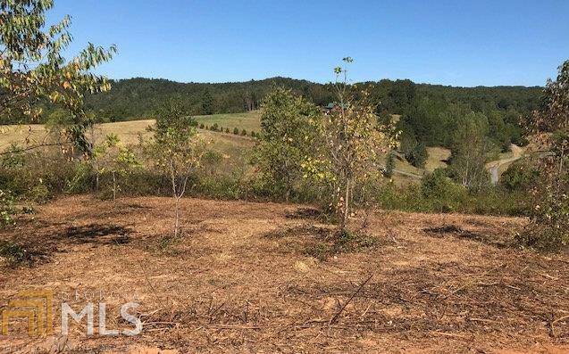 0 Saddle Ridge Farms #5, Warne, NC 28909 (MLS #8463766) :: Rettro Group