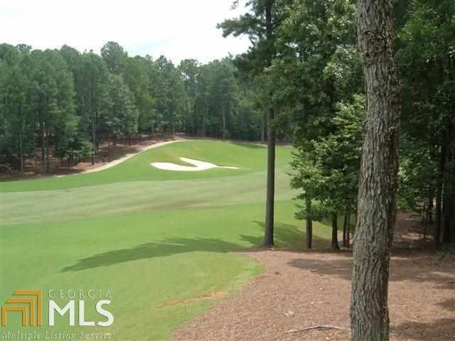 1051 School House Spring Rd, Greensboro, GA 30642 (MLS #8475426) :: Keller Williams Realty Atlanta Partners