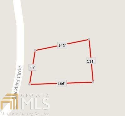 0 Blackbird Cir, Monticello, GA 31064 (MLS #8479495) :: Ashton Taylor Realty