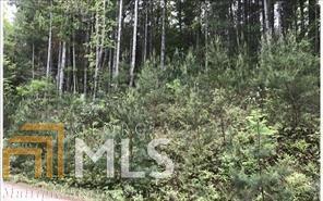 0 Lazy Springs Rd Lot 1, Blairsville, GA 30512 (MLS #8479529) :: Ashton Taylor Realty