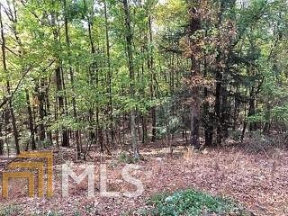 0 Tonto Lot 577, Ellijay, GA 30540 (MLS #8479769) :: Ashton Taylor Realty