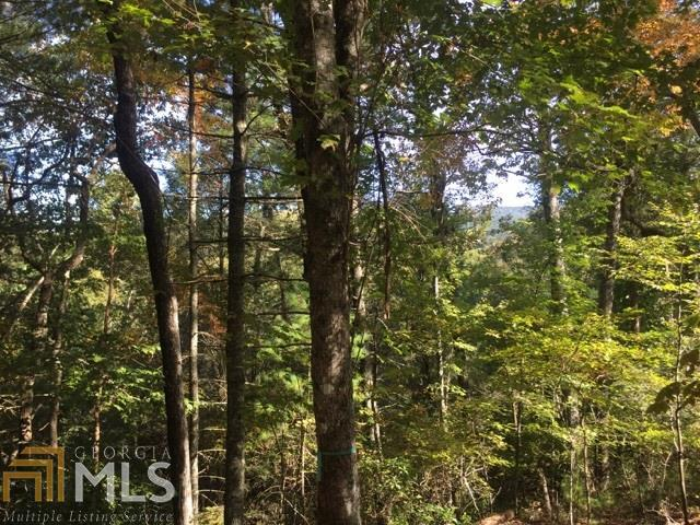 0 Lloyd Shove Rd Lot 22, Blue Ridge, GA 30513 (MLS #8480555) :: The Heyl Group at Keller Williams