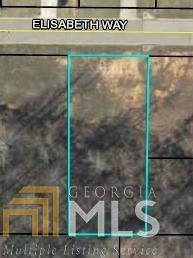 0 Elisabeth Way Lot 28, Grantville, GA 30220 (MLS #8502786) :: Anderson & Associates