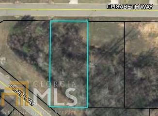 0 Elisabeth Way Lot 30, Grantville, GA 30220 (MLS #8502795) :: Anderson & Associates