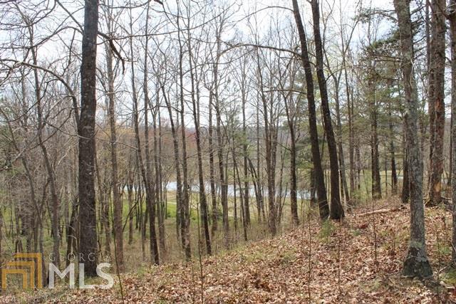 59 Owen Glen, Blairsville, GA 30512 (MLS #8515924) :: Ashton Taylor Realty