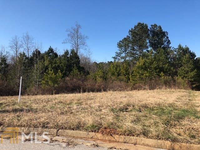 39 Somerset Hills, Fairburn, GA 30213 (MLS #8519569) :: Rettro Group