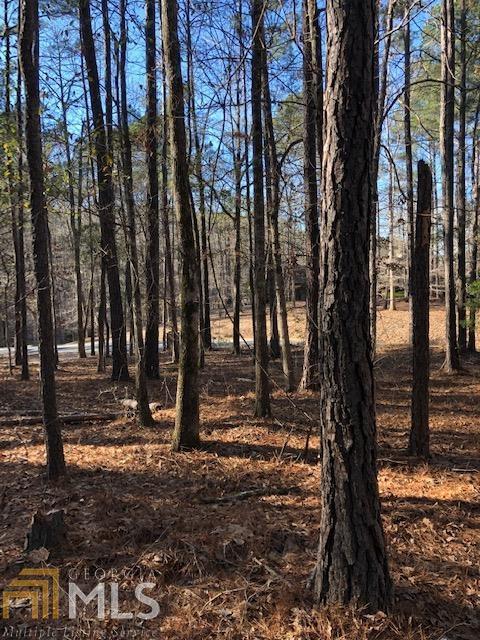 0 Piedmont Lake Rd Lot 159, Pine Mountain, GA 31822 (MLS #8522138) :: Ashton Taylor Realty