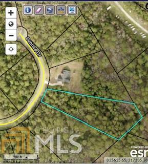 0 Sunrise Dr, Woodbine, GA 31569 (MLS #8527481) :: Bonds Realty Group Keller Williams Realty - Atlanta Partners