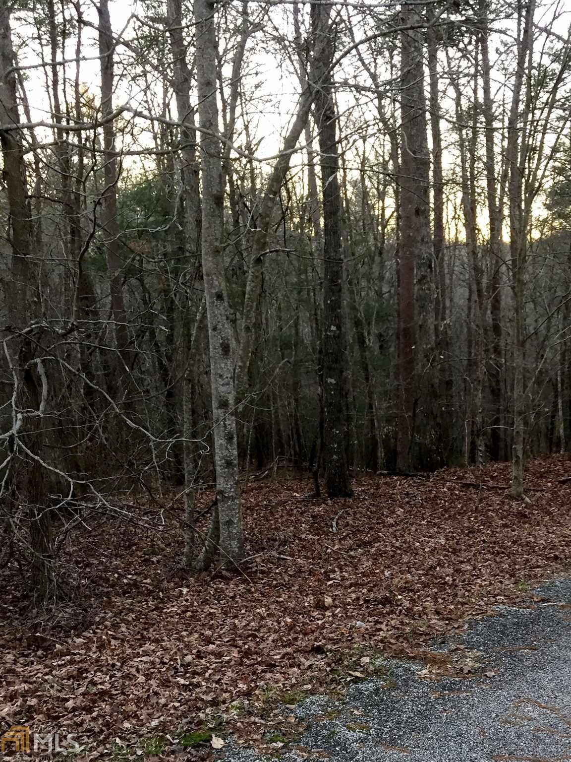 0 Deer Track Rd - Photo 1
