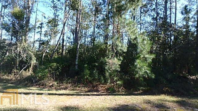 0 Tidal Marsh Way Lot 407, St. Marys, GA 31558 (MLS #8540012) :: Ashton Taylor Realty