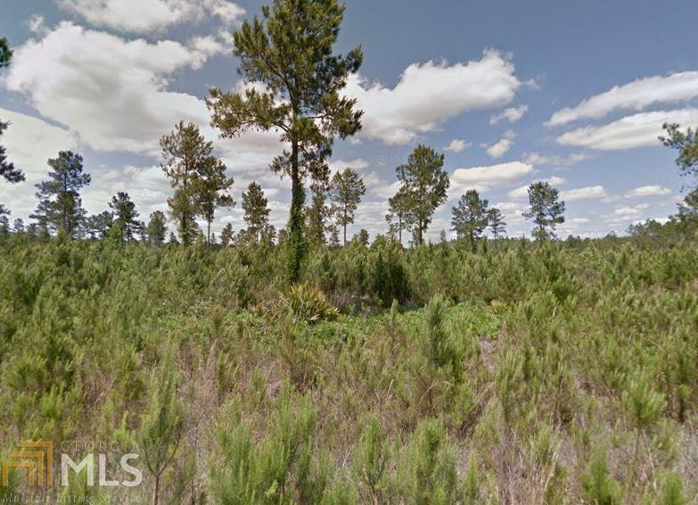281 Satilla Plantation - Photo 1