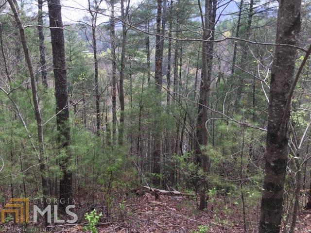 0 Hidden Lake, Cherry Log, GA 30522 (MLS #8558117) :: Rettro Group