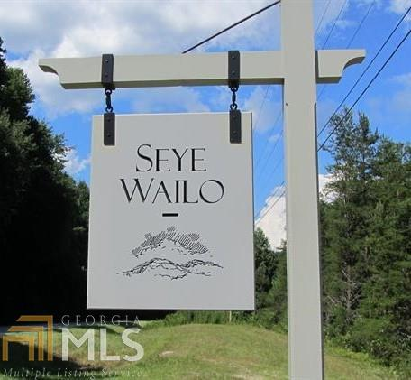 0 Seye Wailo Trl - Photo 1