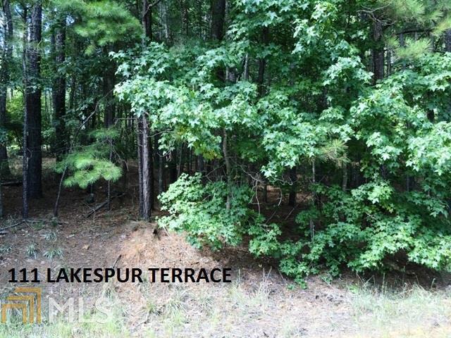 111 Lakespur Ter - Photo 1
