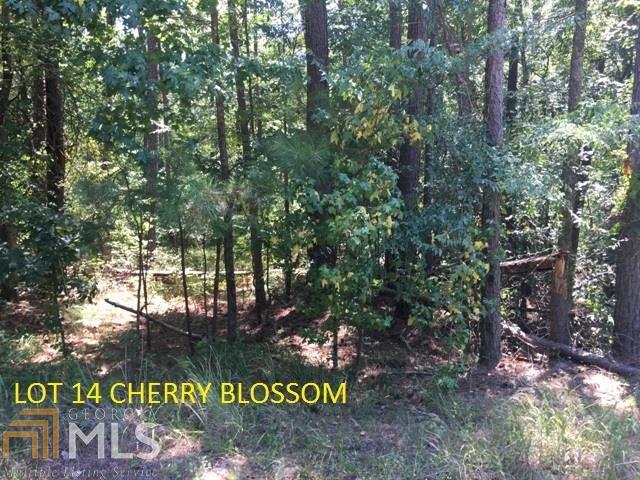 0 Cherry Blossom - Photo 1