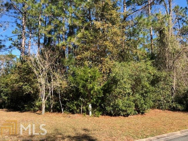 1029 Greenwillow Dr Lot 204, St. Marys, GA 31558 (MLS #8563619) :: Ashton Taylor Realty