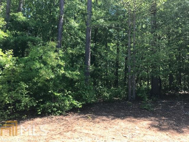 1241 Knowles Aly, Griffin, GA 30224 (MLS #8568866) :: Buffington Real Estate Group