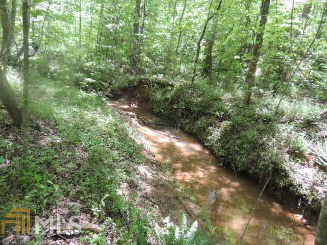 00 Brown Creek Road, Shiloh, GA 31826 (MLS #8570299) :: Crown Realty Group