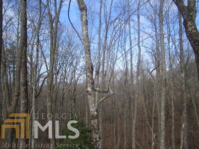 LT102 Thirteen Hundred, Blairsville, GA 30512 (MLS #8572330) :: Rettro Group
