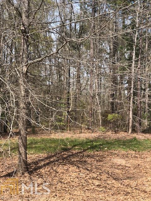 0 White Oak Rd Lot 62, Pine Mountain, GA 31822 (MLS #8578285) :: Royal T Realty, Inc.