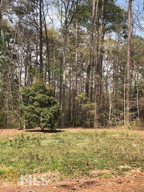 0 White Oak Rd Lot 63, Pine Mountain, GA 31822 (MLS #8578288) :: Royal T Realty, Inc.