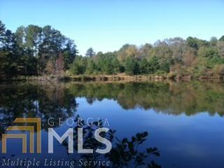 0 Grandma Branch Rd, Grantville, GA 30220 (MLS #8590576) :: Bonds Realty Group Keller Williams Realty - Atlanta Partners