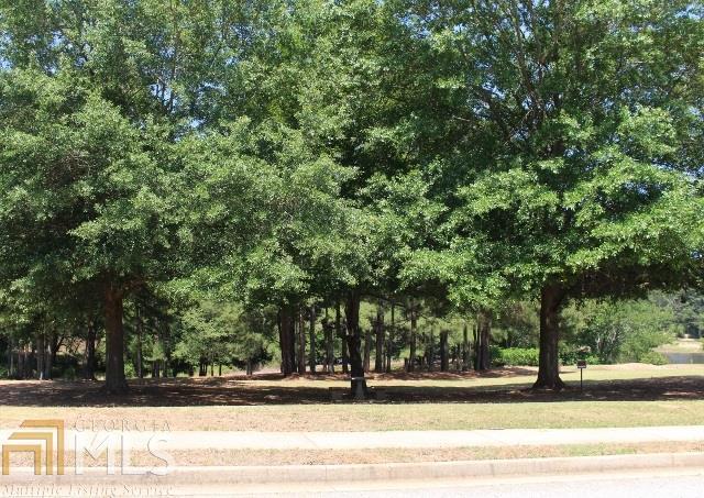 0 Courts Of Hampton, Hampton, GA 30228 (MLS #8593346) :: Rettro Group