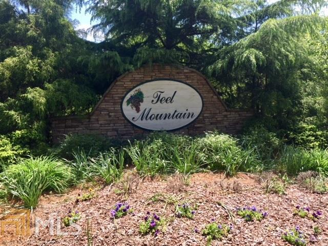 0 Teel Mountain Dr #4, Cleveland, GA 30528 (MLS #8596328) :: Rettro Group