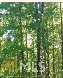0 Mountain Path, Dahlonega, GA 30533 (MLS #8602403) :: The Heyl Group at Keller Williams