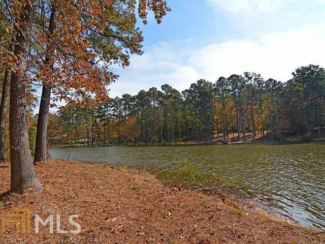 1040 Dove Canyon Drive, Greensboro, GA 30642 (MLS #8603571) :: The Heyl Group at Keller Williams
